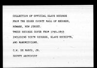 Essex County Slave Records