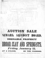 """Auction Sale by the Newark Aqueduct Board of Desirable Property on Broad, Clay, a Spring Streets, Friday, January 12 at 2 o'clock on the premises, conditions of sale made known on the day of sale, or on application to Richard & Southward Auctioneers"