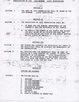 Constitution of the Luis Quintana Civic Association